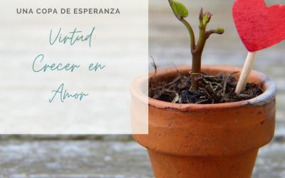 Copa de Esperanza: Virtud: Crecer en Amor